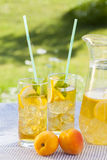 Cold summer drinks in garden Royalty Free Stock Photo