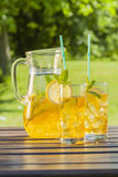 Cold summer drinks in garden Royalty Free Stock Images