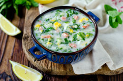 Cold summer soup Royalty Free Stock Photos