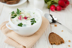 Cold summer soup with yogurt, Russian Okroshka Royalty Free Stock Image