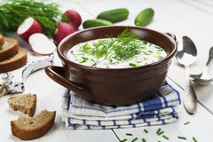Cold summer soup with yogurt and vegetables Stock Image