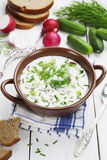 Cold summer soup with yogurt and vegetables Stock Photo
