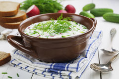 Cold summer soup with yogurt and vegetables Royalty Free Stock Images