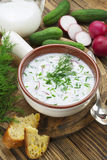 Cold summer soup with yogurt and vegetables Stock Photography