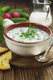 Cold summer soup with yogurt and vegetables Royalty Free Stock Photos