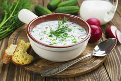 Cold summer soup with yogurt and vegetables Stock Images