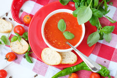 Cold summer tomato dish. Gaspacho soup with toast. Royalty Free Stock Images