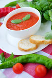Cold summer tomato dish. Gaspacho soup with toast. Stock Images