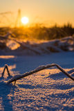 Cold sunrise Royalty Free Stock Photos
