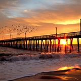 A cold sunrise, to become day, as birds amuse along the pier at Virginia beach. royalty free stock images