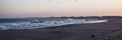 Cold sunset at the beach with sea foam and birds,Thisted,Denmark Stock Image