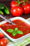 Cold tomato soup Stock Photography