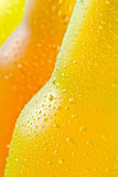 Cold tropical drinks Royalty Free Stock Images