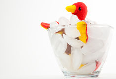 Cold Turkey royalty free stock images