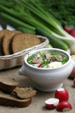 Cold Vegetable Kefir Soup Royalty Free Stock Photography