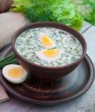Cold vegetable kefir soup Royalty Free Stock Photos