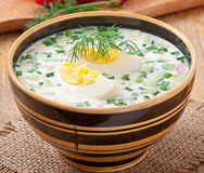 Cold vegetable kefir soup Royalty Free Stock Photo
