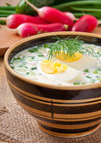 Cold vegetable kefir soup Royalty Free Stock Photos