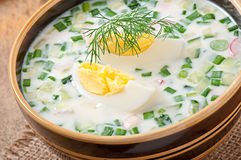 Cold vegetable kefir soup Stock Photography