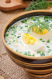 Cold vegetable kefir soup Royalty Free Stock Image