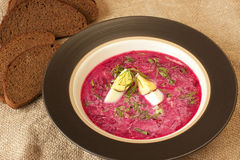 Cold vegetable soup with beet Royalty Free Stock Photo