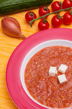 Cold vegetable soup with feta cheese Stock Images