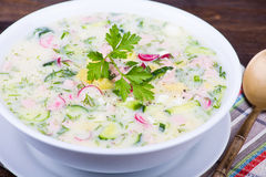 Cold vegetable soup - okroshka Stock Photography