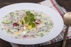 Cold vegetable soup   - okroshka Stock Photo