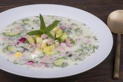 Cold vegetable soup on yogurt, sour-milk base - okroshka Royalty Free Stock Photo