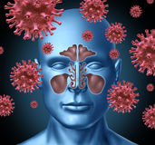 Cold virus infection. Medical symbol represented by a group of red bacterial intruder cells causing sickness and disease to the human body including the sinus Stock Photos