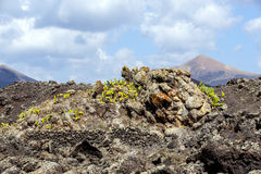 Cold volcanic flow Royalty Free Stock Images