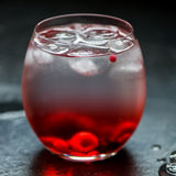Cold Water Drink with Berries and Ice Stock Photography