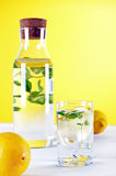 Cold water with lemon and mint Stock Images