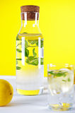 Cold water with lemon and mint Royalty Free Stock Photo