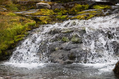 Cold water mountain stream Royalty Free Stock Photo
