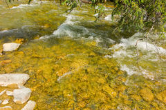 Cold water rushing downstream at a gold-panning creek in canada Royalty Free Stock Photography