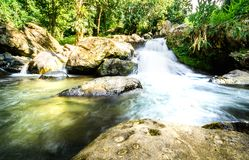 Cold waterfall With natural view Royalty Free Stock Image
