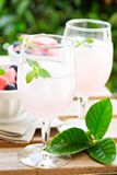 Cold watermelon drink on the table outdoors Royalty Free Stock Photo