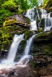 Cold waters of mighty waterfall Shypot. Beautiful nature summer scenery among forest. one of the most visited locations in Carpathian mountains of Ukraine stock images