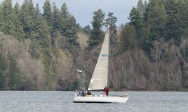 Sailing In Winter On Budd Inlet, Puget Sound, Olympia Washington