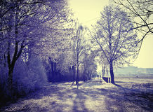 Cold weather in winter light, Bavarian countryside Royalty Free Stock Images