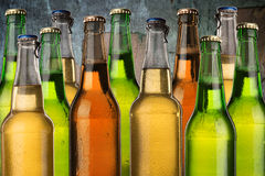 Cold wet beer bottles Stock Images
