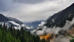 Cloudy sunset in Snoqualmie national park with amazing colorful autumn forest. Cold and wet fall day in northern washington near canada stock images