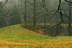 Cold, wet, foggy rural scene Stock Image
