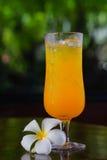 Cold wet orange juice Royalty Free Stock Photography