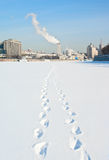 Cold wiinter in Moscow, Russia. Stock Photo