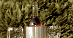 Cold wine in Summer. Cold wine with two classes outside in the garden Stock Photos