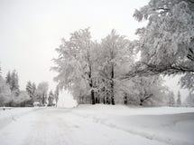 Cold winter Stock Photo