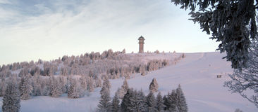 Cold Winter. Winter in the Black Forest in Germany Royalty Free Stock Photos