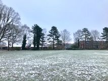 Winter in the park. The cold winter in the city park Royalty Free Stock Photos